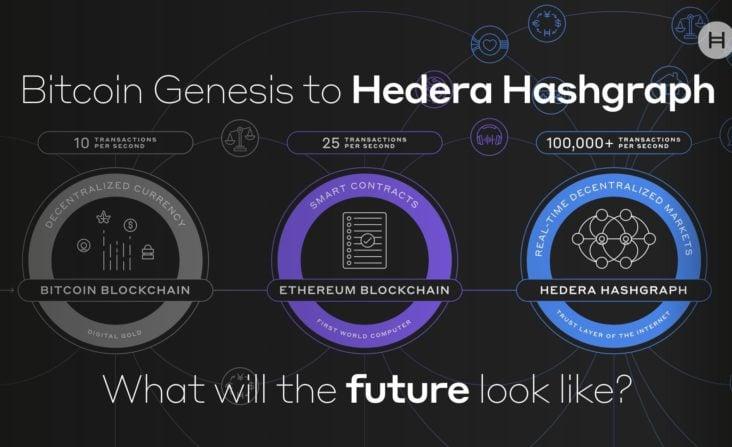 Hedera Hashgraph Future
